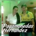 Pagamonedas hernandez_